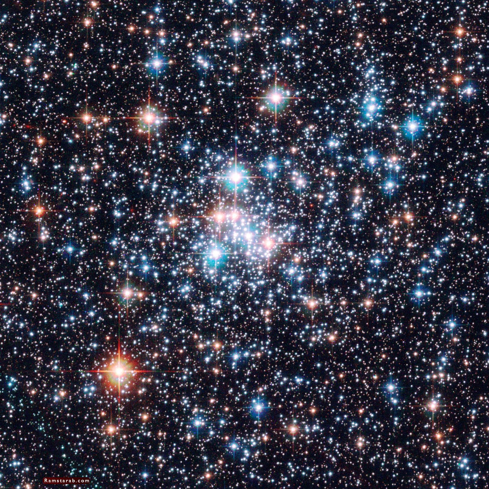صور نجوم5