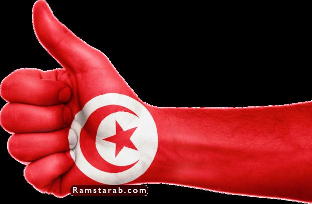 علم تونس30