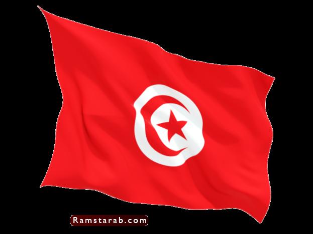 علم تونس29
