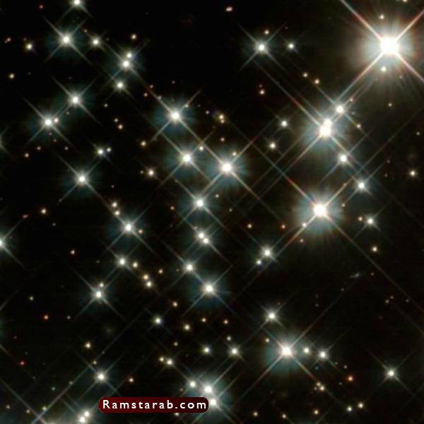صور نجوم9
