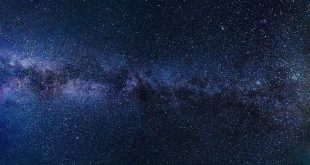 صور نجوم2
